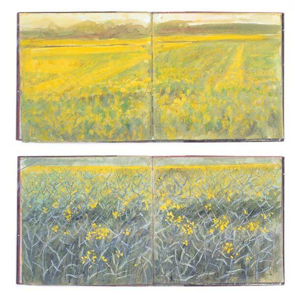 "Grass Fields in Puglia, Italy - Sketchbook from ""Interpretations: Look, Record, Draw"" featuring Jan Beaney & Jean Littlejohn"