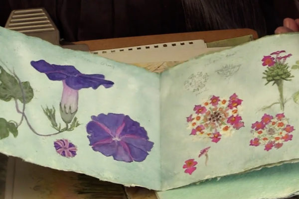 Image of sketchbooks - from Interpretations: Look, Record, Draw