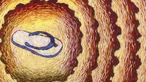 Tom Lundberg Embroidery – Microcosms